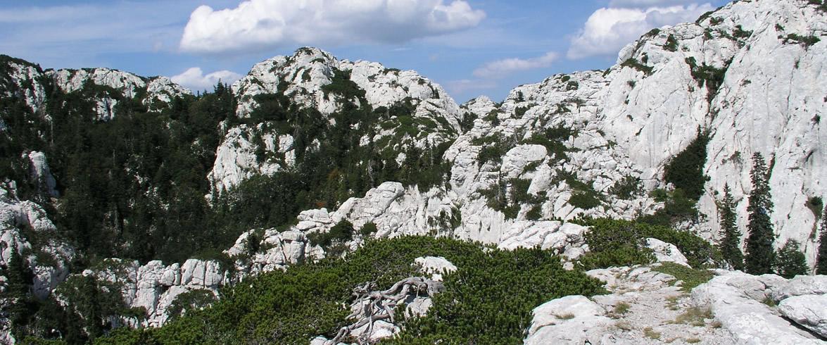 Premužić trail